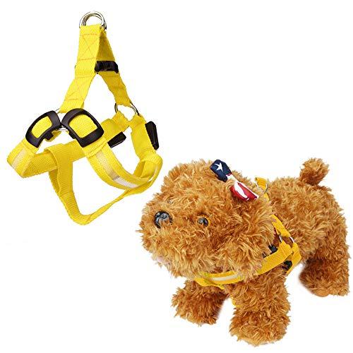 Hpapadks Color Luminous Traction Rope Flashing Strap Led Flash Pet Security Collar Rope Flashlight Dog Belt Dog Stuff for Sale