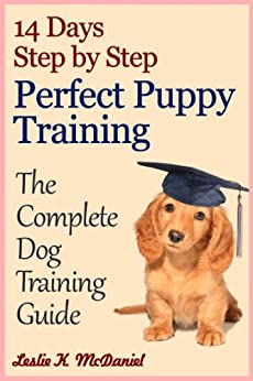 step by step dog training guide
