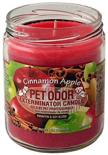 Pet Odor Exterminator Candle, Cinnamon Apple, 13 -