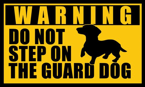 American Vinyl DACHSHUND Do Not Step on the Guard Dog Sticker BUYBOX IS NOT OUR BRAND - FAKE (dach weener weiner)
