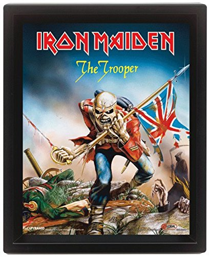 Iron Maiden The Trooper 10x8 Framed 3D Poster Multi Colour