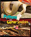 Pythons and Garter Snakes, Henry Thatcher, 1477761101