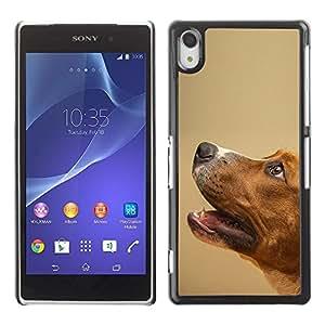 Be Good Phone Accessory // Dura Cáscara cubierta Protectora Caso Carcasa Funda de Protección para Sony Xperia Z2 D6502 D6503 D6543 L50t L50u // Smooth Fox Terrier Mutt Pet Dog Canin