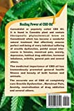 CBD Oil: Perfect Informative Guide For The Most