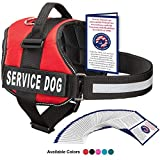 Industrial Puppy Service Dog Vest Harness with 2 Reflective Service Dog Patches (Bright Red, XL)