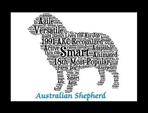 (Australian Shepherd Dog Wall Art Print - Personalized Pet Name - Gift for Her or Him - 11x14 matted - Ships 1 Day )