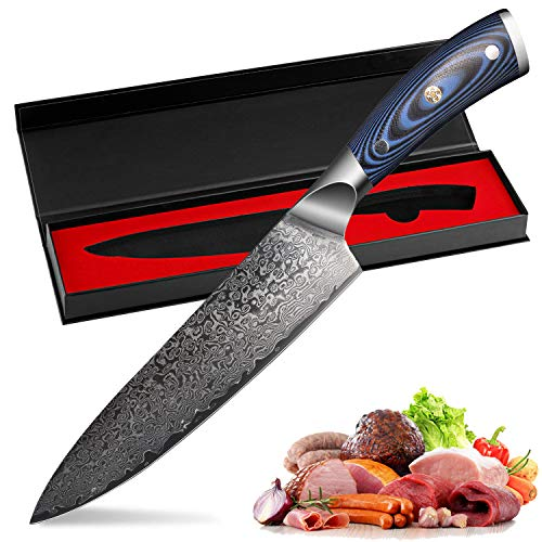 FINETOOL Kitchen Knife 8 inch Professional Chef Knives Japanese Damascus VG10 67 Layer Stainless Steel Knives Ultra Sharp Blue Micarta ()