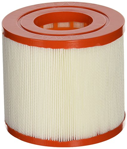 Pleatco PWW10 Replacement Cartridge for Waterway Skim Filter 10, 1 (Waterway Skim Filter)