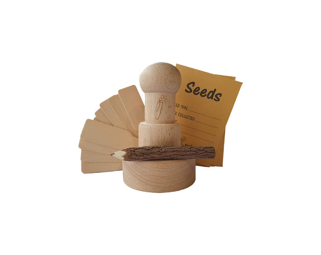 Plus wooden labels Makes fun biodegradable plant pots from scrap paper e-pots e-Gardener Paper Pot Maker Gift Set Plastic free for gardeners seed envelopes and twig pencil