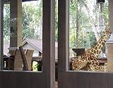 Window Sticker Lying Giraffe window film window tattoo glass sticker window art window décor window decoration window picture Dimensions: 63 x 56.7 inches