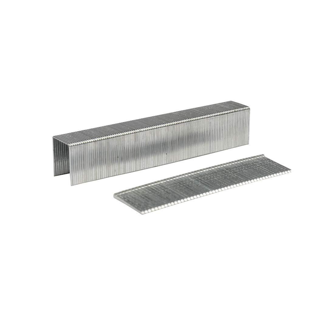 Rhino 311406/grapas 800/piezas con clavos 300/piezas
