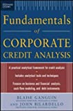 img - for Standard & Poor's Fundamentals of Corporate Credit Analysis by Blaise Ganguin (1-Dec-2004) Hardcover book / textbook / text book