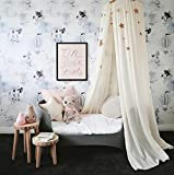 Princess Bed Canopy Mosquito Net Curtain for Hammock - Best Reviews Guide