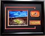 NFL Cleveland Browns First Energy Stadium Picture Frame with Team Patch and Nameplate, Medium, Black