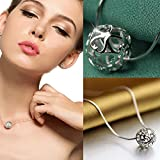 Sumanee Ladies Jewelry Women Hollow Ball Heart Necklace Pendant Silver Chain