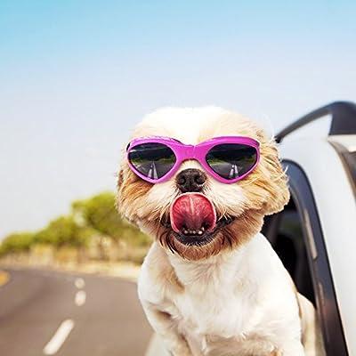 Vevins Dog Goggles Sunglasses UV Protective Foldable Pet Sunglasses Adjustable Waterproof Eyewear