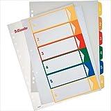 Leitz 100212 - Pack de 20 indices imprimibles