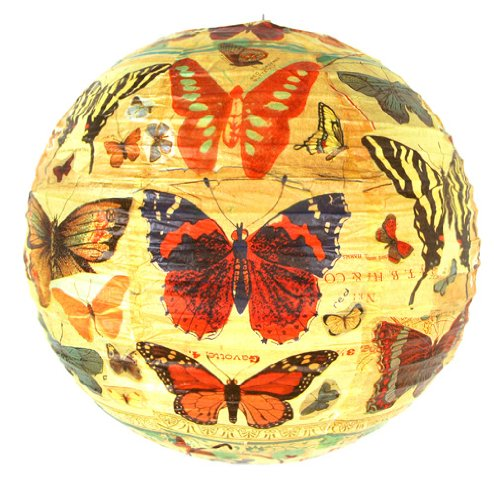 Butterfly Lantern (Paper Lantern - History of the Butterfly)