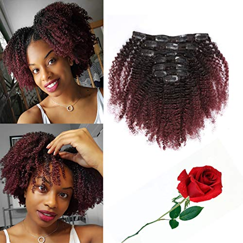 Loxxy Afro Kinkys Curly Hair Extensions Clip In 4B 4C Natural Hair Clip Ins Virgin Brazilian Human Hair Kinky Curly Clip In Hair Extensions Human Hair For Black Women Red Brown #1b/99j 10Inch