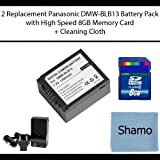 Accessory Kit for Panasonic Digital Cameras with a Replacement Battery Pack for Panasonic DMW-BLB13 For Panasonic DMC-GF1 DMC-GH1 DMC-G1 DMC-G2 DMC-G10 Digital Cameras +8GB High Speed Memory Card +AC/DC Charger +Cleaning Cloth
