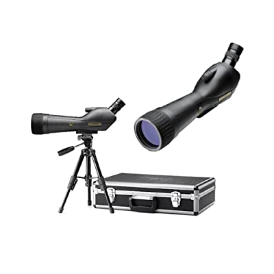 LEUPOLD SX-1 Ventana 2 20-60x80mm Angled Kit Gray/Black (170762)