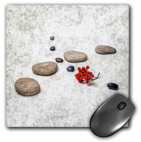 3dRose Alexis Photography - Objects Zen - Intersection of stones and pebbles, cluster of red rowan berries. Zen - MousePad (mp_265666_1)