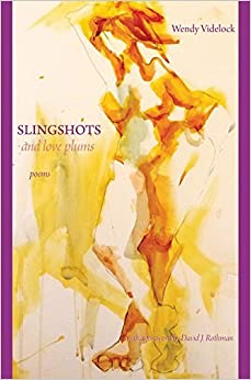 Slingshots and Love Plums by Wendy Videlock (2015-06-22)