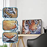 DIY 5D Diamond Painting Kits, Seaintheson Partial Drill Crystal Rhinestone Embroidery Stitch Art Canvas Wall Home Decoration for Adults Kids Beginner, Tiger 25X30CM