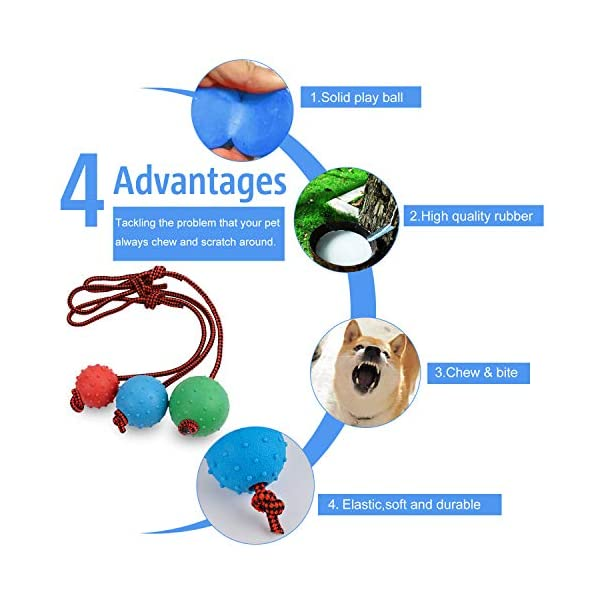 Legendog Dog Rope Ball, 3 Pcs Ball on a Rope Dog Toy Natural Elastic Solid Rubber Dogs Balls Chew Toys for Small Dogs (Multicolor-3PCS) 2