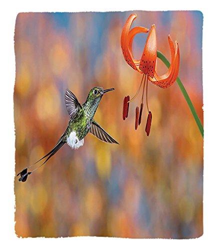 hummingbird nectar recipe - 8