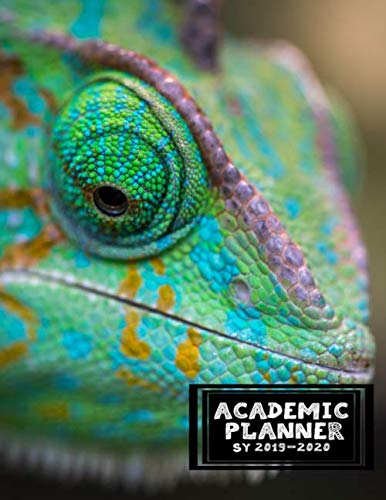 Academic Planner: July 2019 - September 2020 Monthly and Weekly Agenda Organizer For Teachers, Students, Moms, and Educators in the US and Europe -Science Biology Lizard (Environmental Science Activities For High School Students)