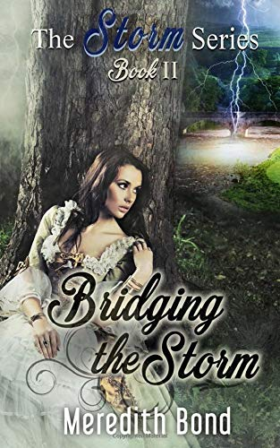 Read Online Bridging the Storm (Storm Series) (Volume 2) PDF