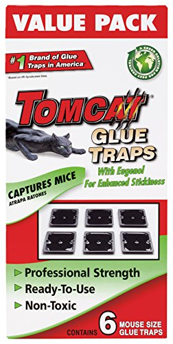 Tomcat Mouse Size Glue