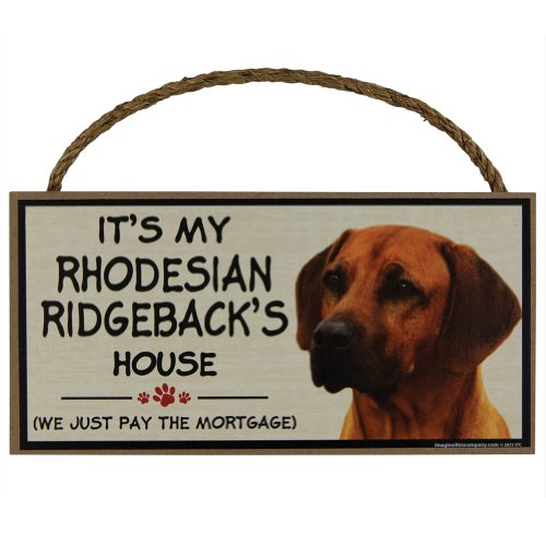 Ridgeback Lion Costume (Animal World - It's My Rhodesian Ridgeback's House Wood Sign)