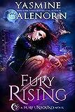 Bargain eBook - Fury Rising