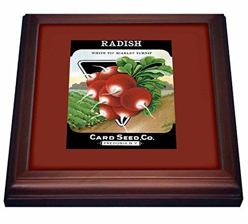 3dRose trv_170717_1 Radish White Tip Scarlet Turnip Root Vegetable Seed Packet-Trivet with Ceramic Tile, 8