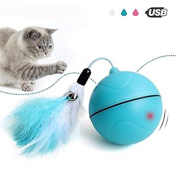 JLCYYSS Juguetes Interactivos para Gatos, Juguete Interactivo Liviano con Carga por USB para Perros Y Gatos, Entretenido Juguete para Ejercicios con Pluma ...