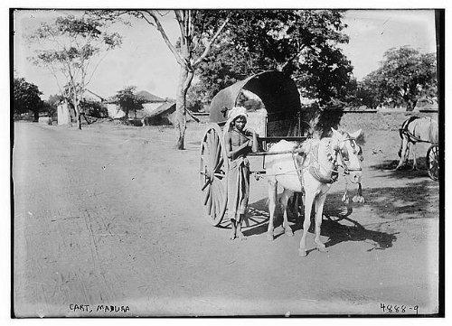 HistoricalFindings Photo: Cart,horse drawn wagons,transportation,streets,roads,Madura,Bain Service