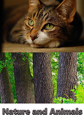 Beautiful Nature and Animals: Pictures Book
