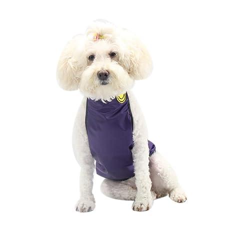 NashaFeiLi Arnés para Mascotas, Chaleco de protección para Perros ...