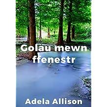 Golau mewn ffenestr (Welsh Edition)