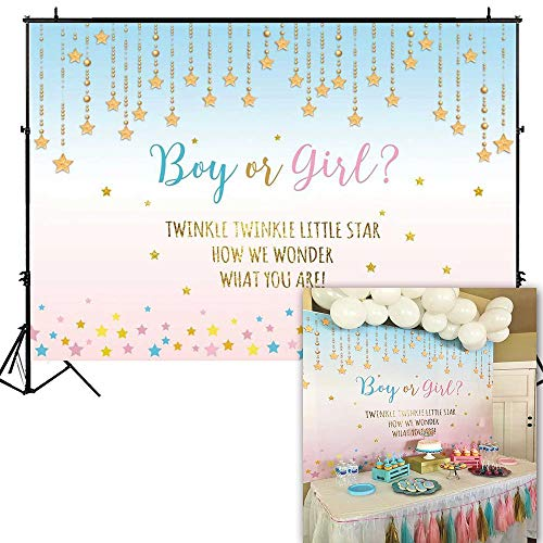 Funnytree 7X5ft Pink and Blue Gender Reveal Party Backdrop Boy Or Girl Twinkle Twinkle Little Star Photography Background Gender Surprise Photo Banner for Baby Shower Photobooth Cake Table Decoration -