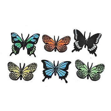 Amazon.com: Imán de la mariposa Diseño de la placa de ...