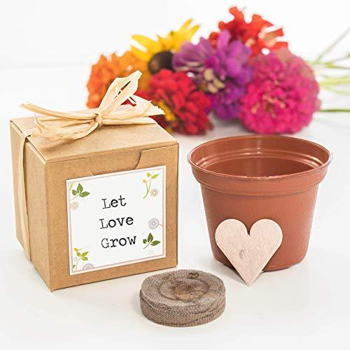 Plantable Seed Paper Heart Wedding Favor Garden Kits (Set of 12)