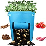 Casolly 10 Gallon Potato Grow Bags for Garden Planting with Sturdy Handles - Blue,2 Pack