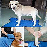 DII Bone Dry Microfiber Pet Bath Towel, Ultra-Absorbent & Machine Washable for Small, Medium Dogs and Cats (L)