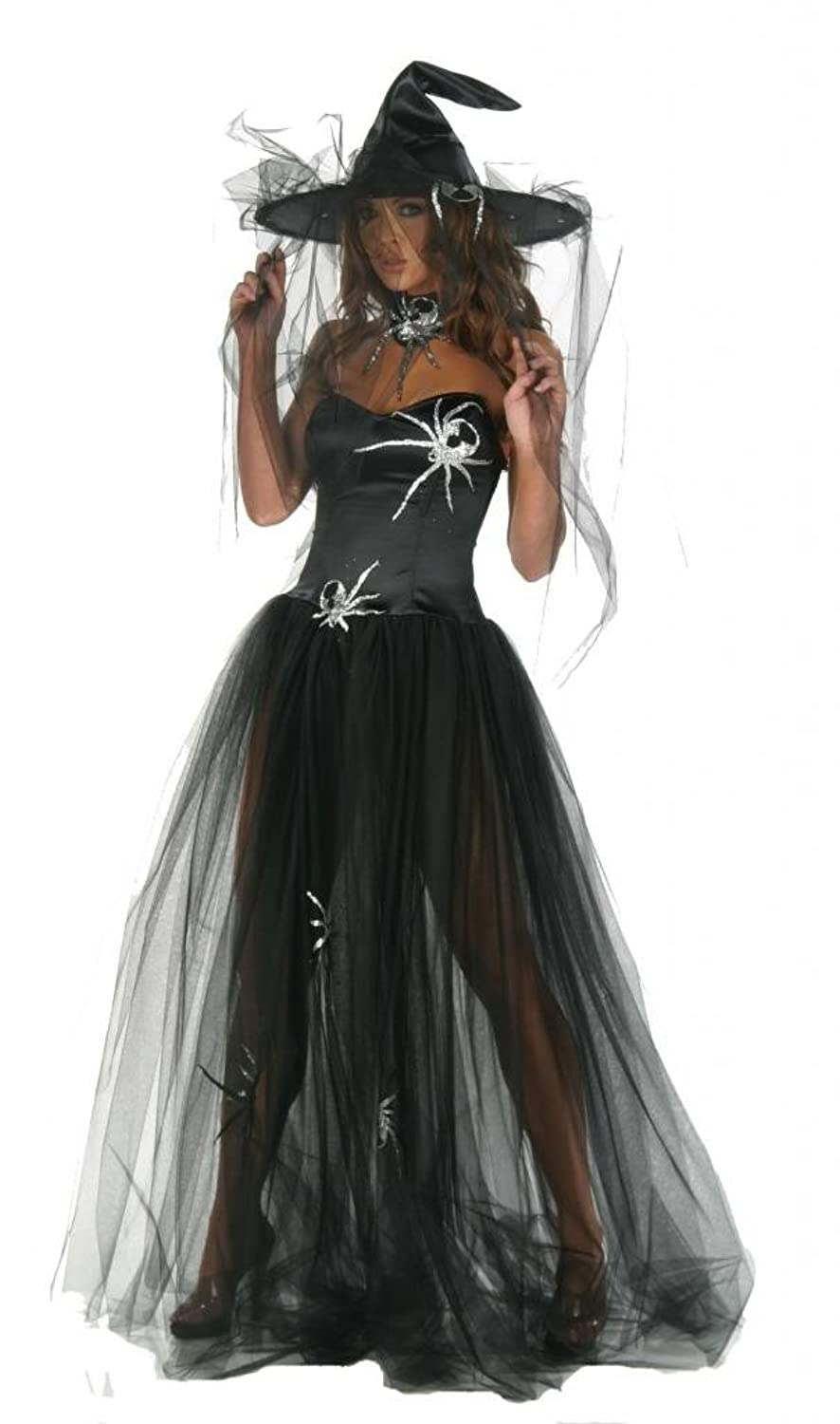 Nom de Plume, Inc Sexy Witch Spider Gown Costume With Hat