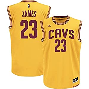 Cleveland Cavaliers Lebron James Youth 2nd Alternate Replica Jersey