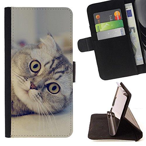STPlus Gato en una caja Animal Monedero Carcasa Funda para Motorola Droid Turbo 2 #20