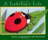 img - for A Ladybug's Life (Nature Upclose (Paperback)) book / textbook / text book